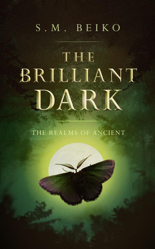 The Brilliant Dark by S. M. Beiko